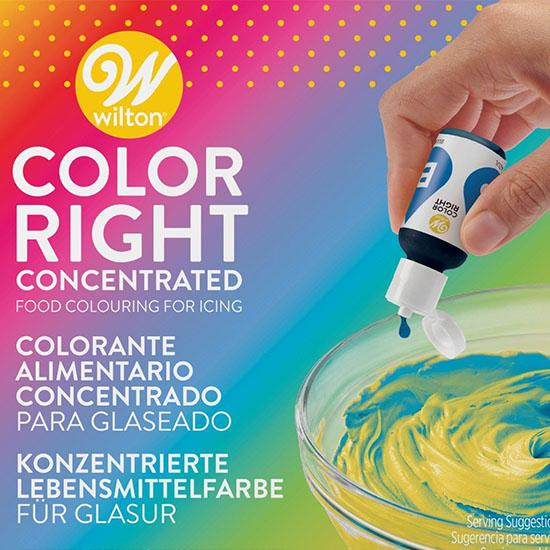 Kit Colorant Lichid Concentrat Setx8